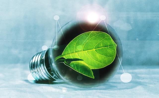 light-bulb-2632075_640
